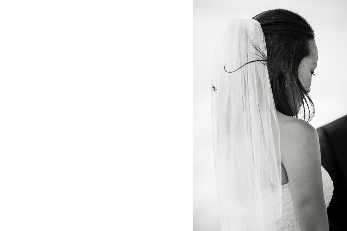 wedding ceremony bride veil photos